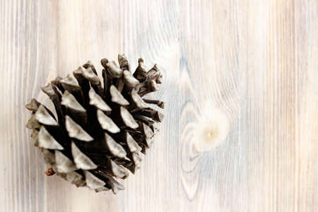 Pine cone on natural light whitewashed wooden background. The concept of healthy eating organic food, vegetarian. Top view. Selective soft focus. Shallow depth of field. Text copy space. 写真素材