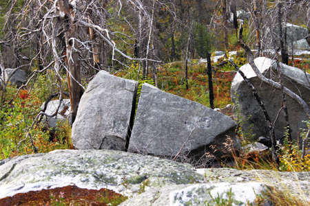 Natural background view to taiga forest with megalithic seid boulder stones, dead trees in nature reserve on mountain Vottovaara, Karelia, Russia. Lapps Sami heathen Shaman worship Hyperborea Concept