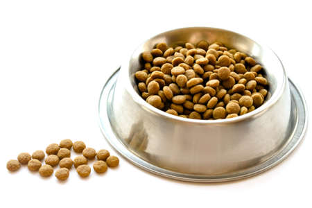 Cats and dogs dry food in metal stainless steel bowl isolated on white color background close up side view. Selective soft focus. Shallow depth of field. Text copy space. Feeding pet concept