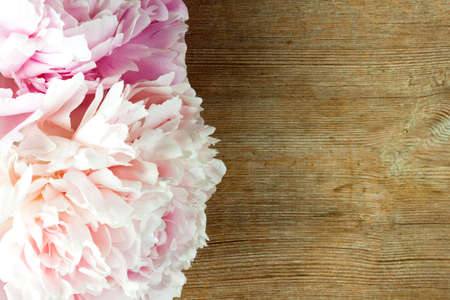 Beautiful peonies bouquet pink white on rustic wooden background. Greeting card, spring concept. Close up. Selective focus. Copy space