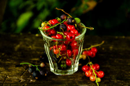 Ripe red currant on a wooden table background outdoors garden. Close up. Selective focus. Copy space
