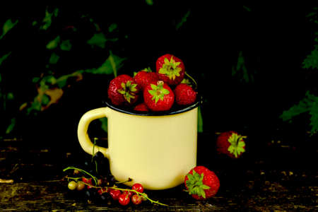 Ripe red black currant, strawberry on wooden table background outdoors garden. Dark photo