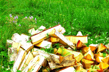 Dry firewood pile split, chopped laying on green grass natural background. Heating home concept.