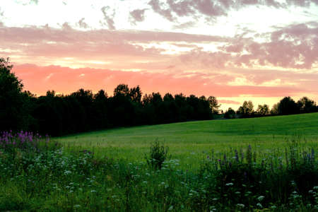 Beautiful dramatic sky colorful orange clouds sunset over forest and meadow. Landscape panoramic view. 写真素材