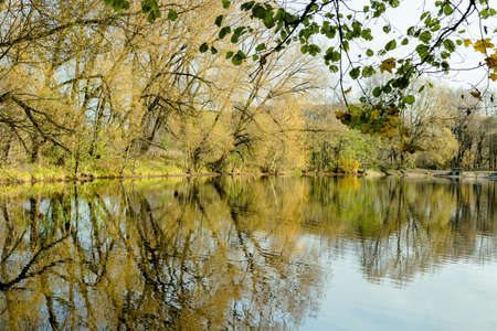 beautiful autumn landscape of pond lake river bank with golden leaves, blue sky, reflection in water. Selective soft focus. Text copy space