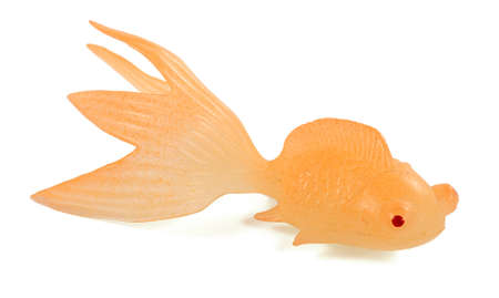 goldfish isolated on white background photo