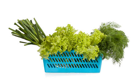 Blue plastic basket with young garlic, lettuce and dill isolated on white background photo