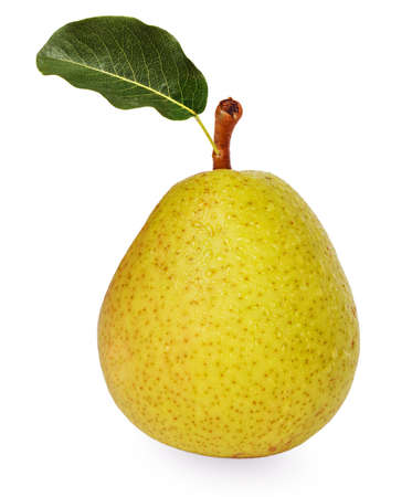 Big ripe pear with green leaf isolated on white background photo