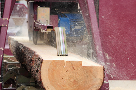 lumbering: Sawing boards from logs with modern sawmill.