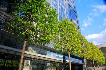 Trees and modern glass business building in spring day.