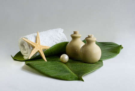 cleaning products: cleaning products for spa & sauna