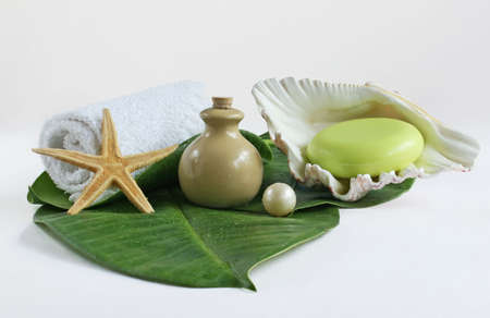 Still-life about spa and bath cleaning products Stock Photo - 1788073