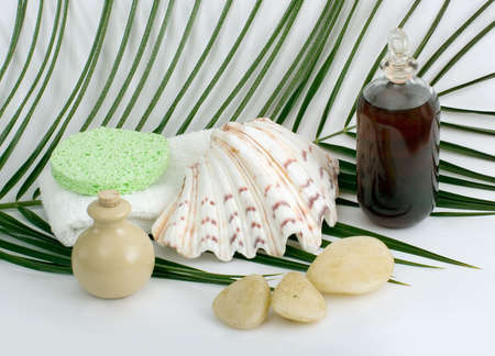 Products for bath,aromatherapy, cleaning and spa. Stock Photo - 2414515