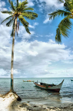 tropical seascape with  boat and coconut palm tree Stock Photo - 2806352
