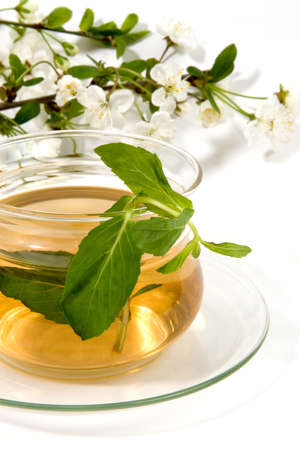 salubrious: herbal tea in glass cup with blossoming spring branch.