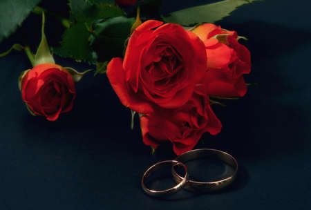 wedding rings and roses on dark blue background Stock Photo - 3016582