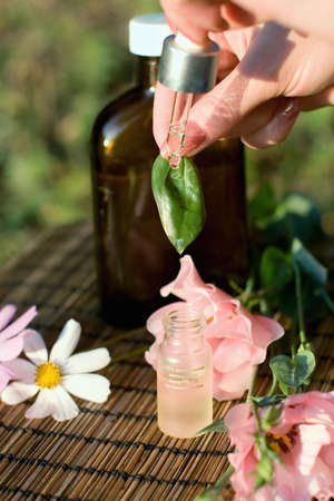 tincture: concept of aromatherapy. Herbal essential oil and tincture