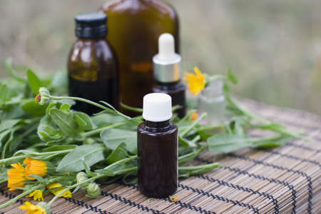 tincture: Calendula flower and aromatherapy essential oil and tincture in glass bottle. Stock Photo