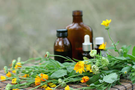 tincture: Medical calendula Stock Photo
