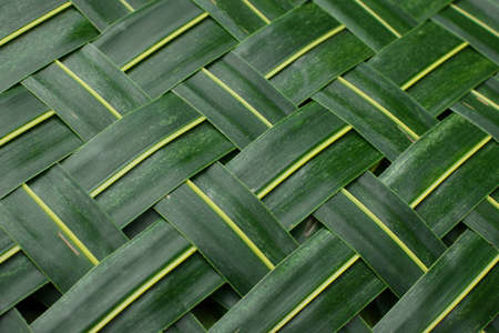 braided: Background. Green woven palm leaves mat