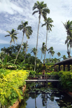 Tropical resort with footbridge, pond and tropic plants. Outdoor photo