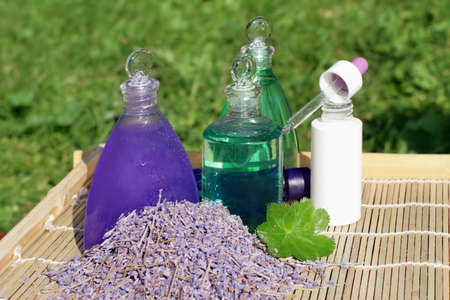Cosmetic preparations from a lavender and aloe vera - essential oil and lotion Stock Photo - 7922273