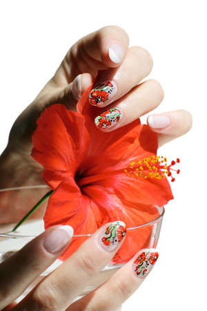 Beautiful nail design. Woman hands with hibiscus on white background. Stock Photo
