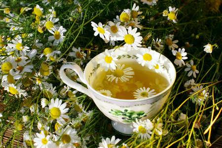 Herbal chamomile tea Stock Photo - 7989412