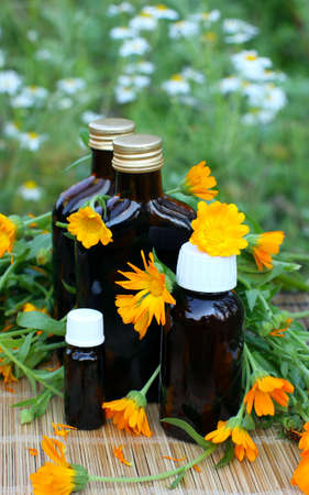 tincture: Calendula flower with aromatherapy essential oil and tincture in glass bottle.
