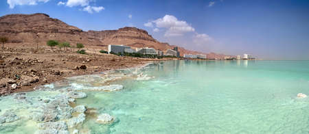 dead trees: Dead Sea coast. Hotels and Spa centers. Israel. Panorama