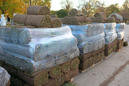 Green turf grass rolls stacked in a pile on wooden pallets  photo