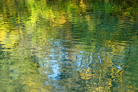 rippled: Surface of the water with reflection of green and yellow foliage of trees