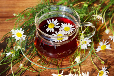 flowers garden: Cup of herbal tea with chamomile flowers on wooden table in garden Stock Photo