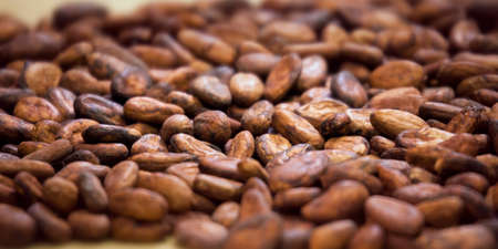 aromatic: Aromatic cocoa beans  background. Selective focus Stock Photo