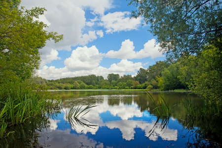 Pond with the reflected clouds in the forest. Summer landscape