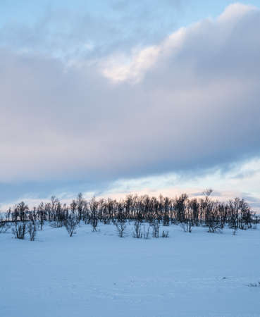 Winter in the East of Norway Stock Photo