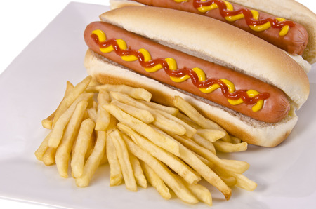 Hot dogs and french fries 免版税图像