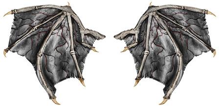 Alas de dragón sangrientas, aisladas sobre fondo blanco. De cerca.