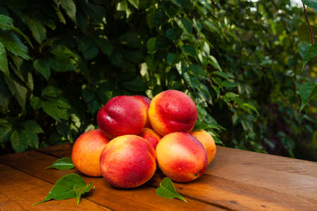Few peaches and water drops on a wooden table and fallen autumn leaves Stock Photo