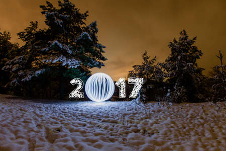 fool moon: 2017 New Year greeting card with night forest and fool moon Stock Photo