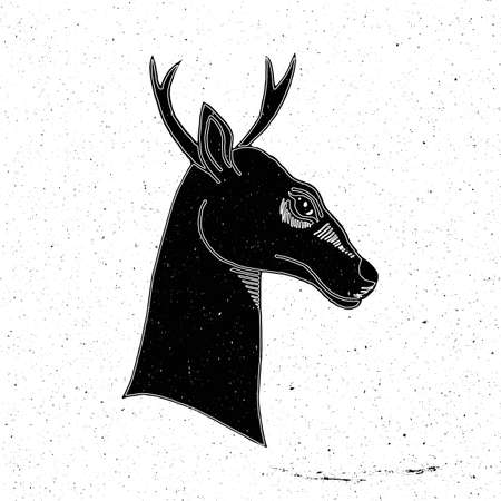 zoo as: Deer head hand drawn in grunge style, can be used as a print on a t-shirt, textile, background, sign for the zoo and shop hunting, icon, tattoo, poster
