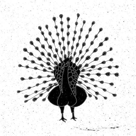 zoo as: Peacock hand drawn in grunge style, can be used as a print on a t-shirt, textile, background, sign for the zoo and icon, tattoo, poster Illustration