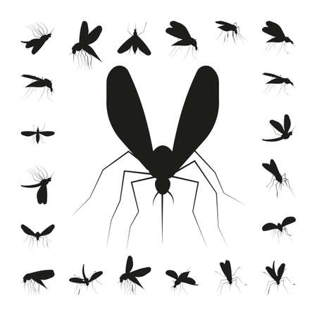 Set mosquito silhouette isolated on white background