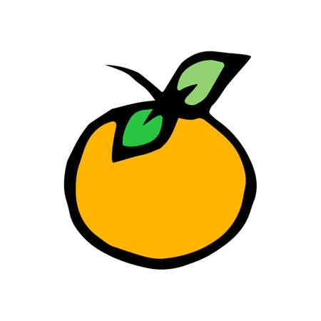 mandarin orange: mandarin orange icon isolated on white background in style hand draw
