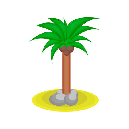 Cartoon palm tree with kakos on the on the island isolated on a white background.