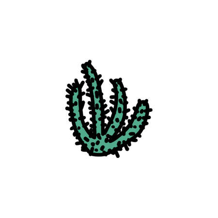 Cactus hand drawn icon isolated on white background