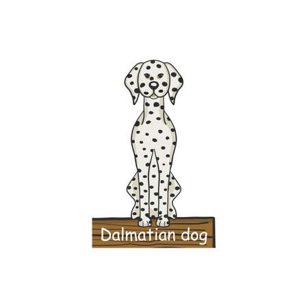 Dalmatian dog cartoon dog icon isolated on white background.