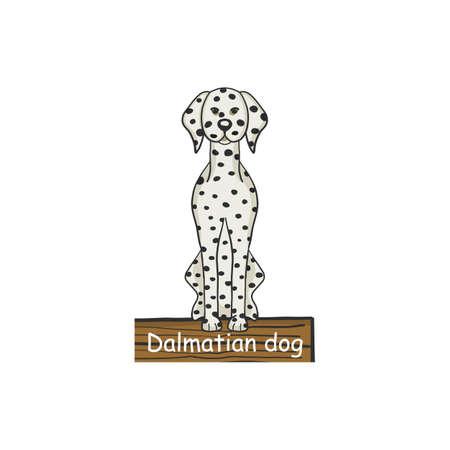 Dalmatian dog cartoon dog icon isolated on white background.