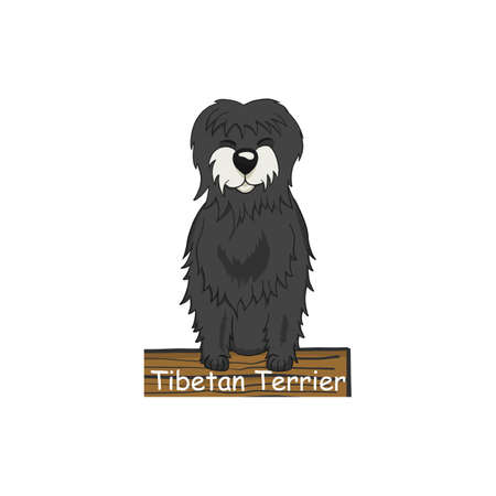 Tibetan terrier cartoon dog icon isolated on white background.