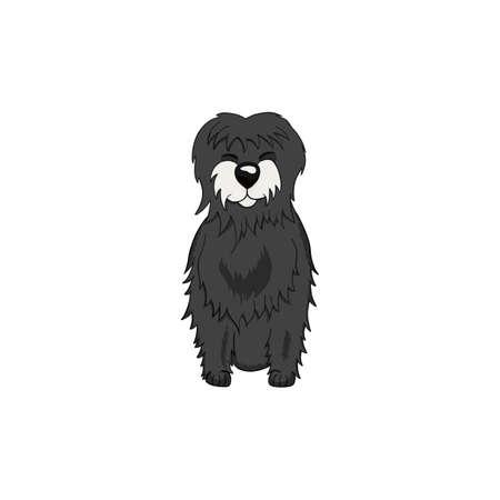 Tibetan Terrier cartoon dog icon isolated on white background